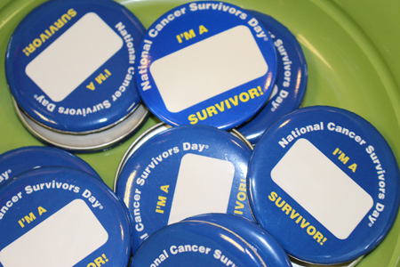 Cancer Survivors Day 2014 Pins